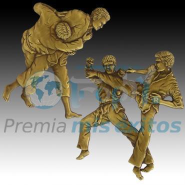 Figura de artes marciales para diploma