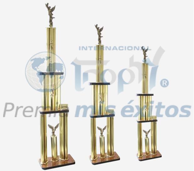 Trofeos línea Competens